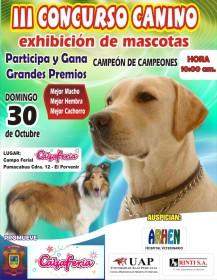 Tercer Concurso Canino en la IX Calzaferia Porvenir